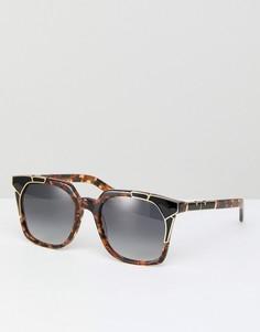Черепаховые квадратные солнцезащитные очки Pared - Коричневый