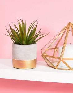 Керамический цветочный горшок с золотистой отделкой Sass & Belle - Мульти