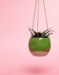 Подвесной цветочный горшок Sass & Belle - Мульти