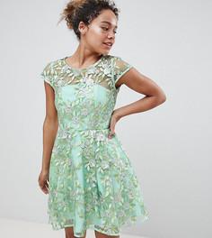 Короткое приталенное платье с вышивкой ASOS EDITION Petite - Зеленый