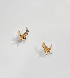 Позолоченные серьги-гвоздики Bill Skinner - Золотой