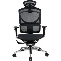 Кресло эргономичное GTChair SE-13D GT-12 I-See black (chromed frame)