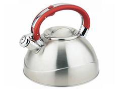 Чайник TECO 3L TC-109-R