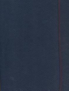 Ежедневник Феникс+ Agenda Class Blue 18409