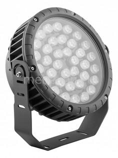 Настенный прожектор LL-885 32146 Feron