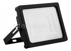Настенный прожектор LL-920 32101 Feron