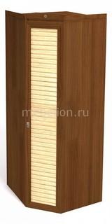 Шкаф платяной Робинзон 10 ИД 01.133 Интеди