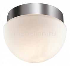 Накладной светильник Minkar 2443/1A Odeon Light