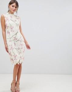 Платье-футляр с цветочным принтом и вязаным кружевом Paper Dolls - Мульти