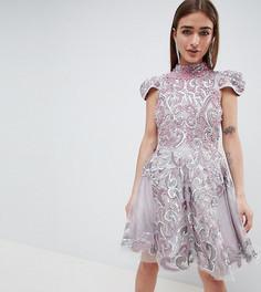 Короткое приталенное платье A Star is Born Petite - Розовый