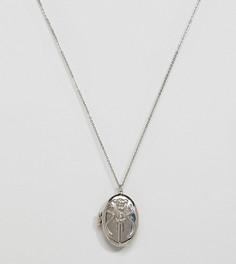 Ожерелье с подвеской-медальоном Sacred Hawk - Серебряный