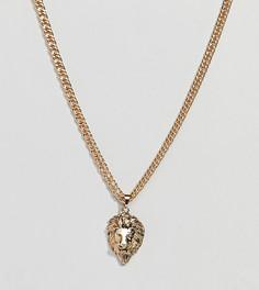 Толстое ожерелье с головой льва Uncommon Souls - Золотой