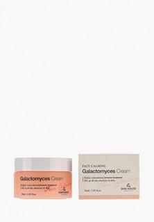 Крем для лица The Skin House Ферментированный «Глактокомус» 30 мл