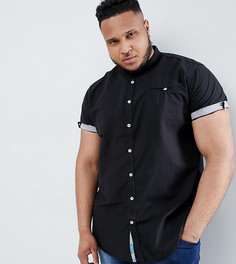 Оксфордская рубашка с короткими рукавами и без воротника Duke Plus - Черный