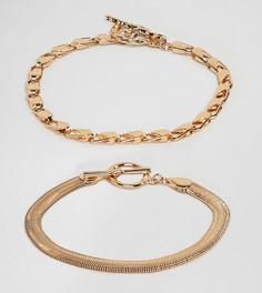 2 браслета с толстой и плоской цепочкой ASOS DESIGN Curve - Золотой