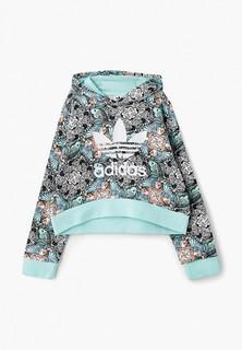 Худи adidas Originals J ZOO HOODIE