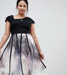 Пышное платье из органзы с принтом Coast Plus - Черный