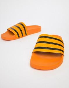 Желтые шлепанцы adidas Originals Adilette CQ3099 - Желтый