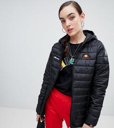 Дутая куртка на молнии с капюшоном Ellesse - Черный
