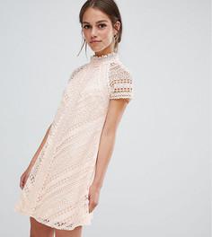 Кружевное платье мини А-силуэта Little Mistress Petite - Розовый
