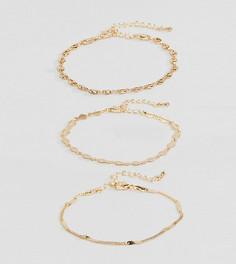 3 браслета-цепочки ASOS DESIGN Curve - Золотой