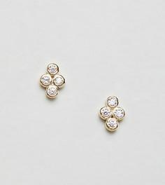 Серьги-гвоздики с позолотой 18 кт Shashi Noa - Золотой