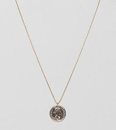 Позолоченное ожерелье Estella Bartlett - Золотой