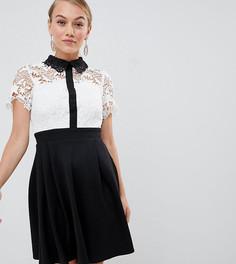 Короткое приталенное платье 2 в 1 с кружевным топом и контрастным воротником Paper Dolls Petite - Мульти
