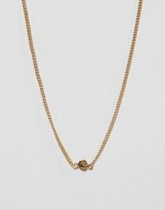 Ожерелье с небольшим черепом Cheap Monday - Золотой