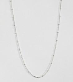 Серебряное ожерелье-цепочка Kingsley Ryan - Серебряный