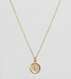 Позолоченное ожерелье с подвеской-диском в виде солнца Ottoman Hands - Золотой