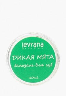 Бальзам для губ Levrana Дикая Мята, 10 гр