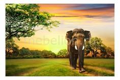 Панно (60х40 см) Слон 119728996 Ekoramka