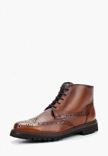 0170f2c85 Мужские зимние ботинки Lloyd – купить в интернет-магазине | Snik.co