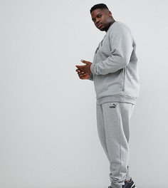 Серые зауженные джоггеры Puma Essential 85175303 - Серый