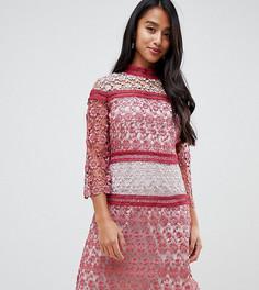 Свободное платье мини с контрастным кружевом Little Mistress Petite - Красный