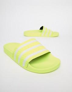 Желтые шлепанцы adidas Originals Adilette B37957 - Желтый