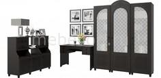 Гарнитур для кабинета Соня премиум Компасс мебель