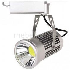 Светильник на штанге HL825LSIL HRZ00001867 Horoz Electric