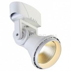 Настенно-потолочный прожектор Projector 1767-1U Favourite