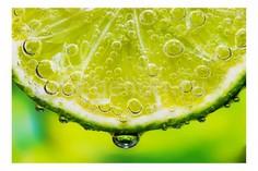 Панно (60х40 см) Лимон 111301516 Ekoramka