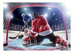 Панно (70х50 см) Хоккей 1708065К7050 Ekoramka