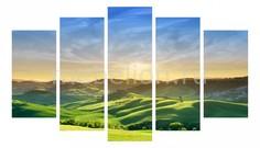 Набор из 5 панно (1350х820 см) Зеленые луга 175243М13582 Ekoramka