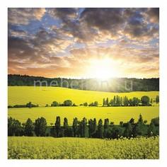 Панно (40х40 см) Поле и солнце 120303170 Ekoramka