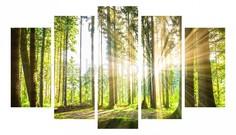 Набор из 5 панно (1350х820 см) Солнце в лесу 1768582М13582 Ekoramka