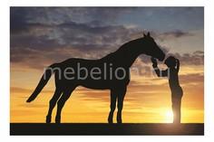 Панно (60х40 см) Девушка и лошадь 137231453 Ekoramka