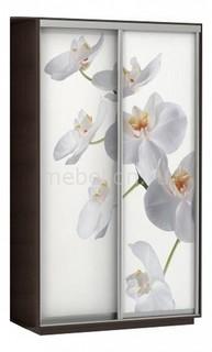 Шкаф-купе Экспресс Фото 2 Белая орхидея E-1