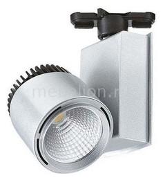 Светильник на штанге HL829L 018-005-0040 Серебро Horoz Electric