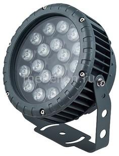 Настенный прожектор LL-885 32148 Feron