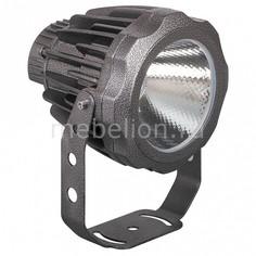 Настенный прожектор L-888 32154 Feron